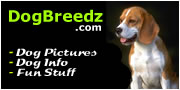 Dog Pictures, Dog Info and Fun Stuff